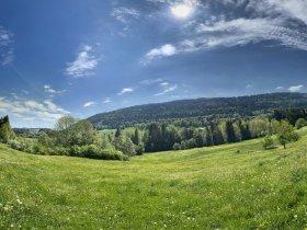 Aussicht zum Rottachberg