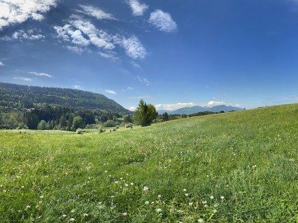 Rottachberg