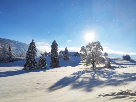 Winterlandschaft Gablerhof