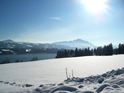 Niedersonthofener See und Grünten