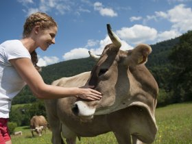 Kühe auf dem Gablerhof