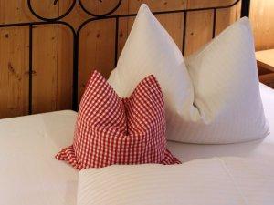 Alpin Ferienwohnungen www IMG 9208