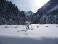 unberührte Winterwelt