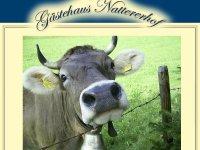 Logo Gästehaus Nattererhof