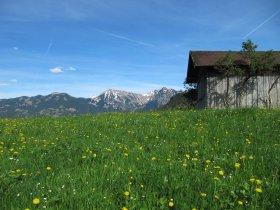 Frühling in Obermaiselstein