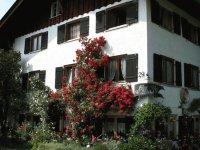 Rosen am Haus