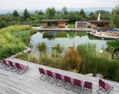 Csm Naturberich - Quelle - Rheinwelle - Die rheinhessische Wasserwelt