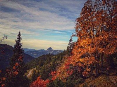 Herbsttage im Allgäu