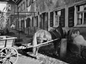 Pferdekarren vor dem Gasthof Adler