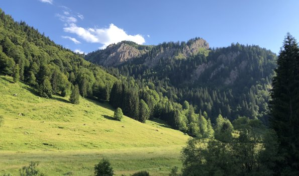 Auf dem Weg zur Alpe Scheidwang