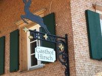 Hirsch 2