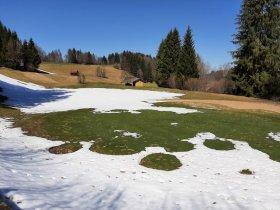 Schneereste und frei geschaufeltes Grün 9