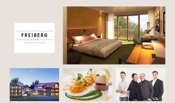Freiberg - Collage Webseite