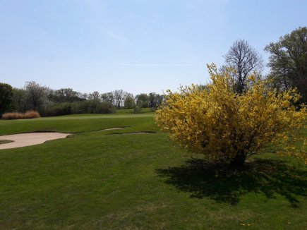 Tolle Baumblüte im GC Ravensburg