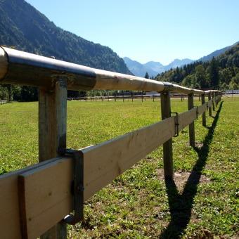 Pfahlsystem Oberstdorfer Viehscheid 1