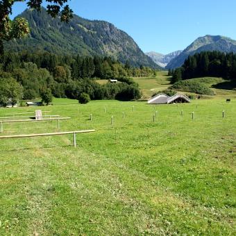 Pfahlsystem Oberstdorfer Viehscheid 5