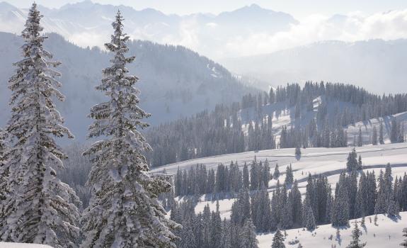 Winterparadies Grasgehren