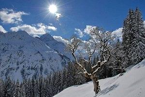 Wunder weißer Winter-Zauber