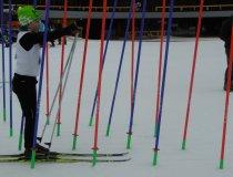GS Wettbewerb ski nordisch (9)