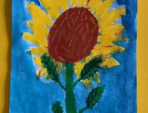 Sonnenblumen 20 21 (2)
