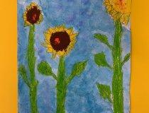 Sonnenblumen 20 21 (4)