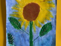 Sonnenblumen 20 21 (6)