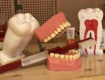 Zähneputzen macht Spaß 20-21 (2)