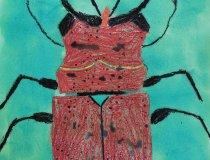 Insekten 20-21 (2)