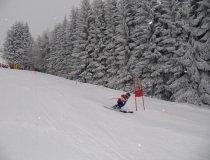 GS wettbewerb Ski (4)