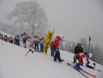 GS wettbewerb Ski (7)