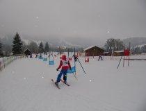 GS wettbewerb Ski (10)