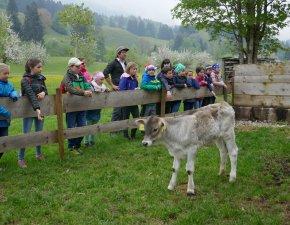 Bauernhofbesuch (2)
