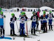 GS Wettbewerb nordisch 2019 (10)