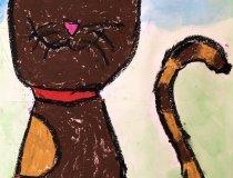 Katzen (5)