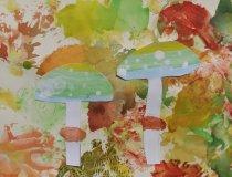 Pilze im Herbstwald (6)