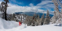 Lake Tahoe Skisafari
