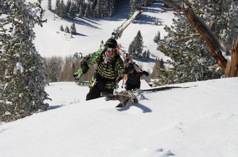 Skisafari Utah