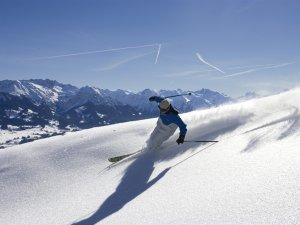 Skifahren Pulverschnee g