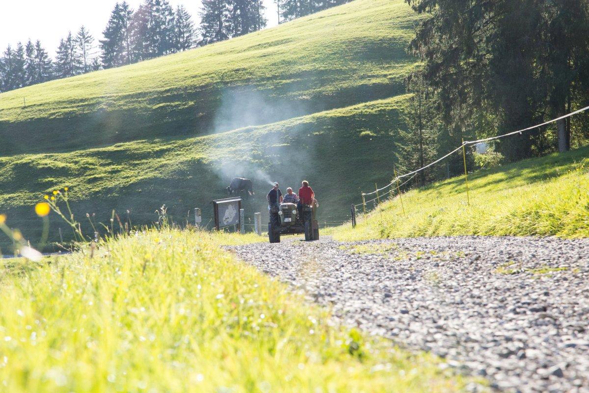 Mit Klaus Hauber und dem alten Fendt zu Kultur am Berg auf 950 Höhenmeter