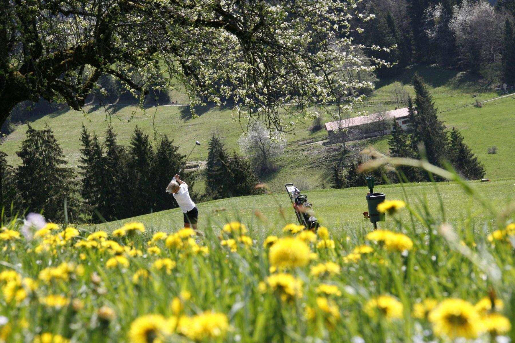 Golfspieler im Allgäu beim Abschlag