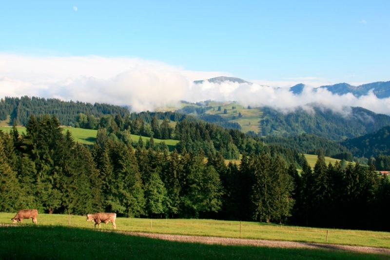Landschaft bei Fastenwanderung im Allgäu
