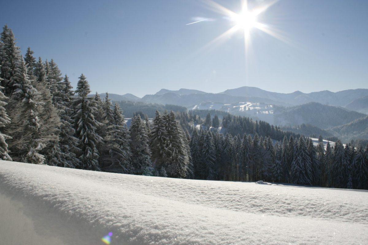 ...nach 4 Tagen Neuschnee messen wir über 1 Meter Schnee am Schwalbennest