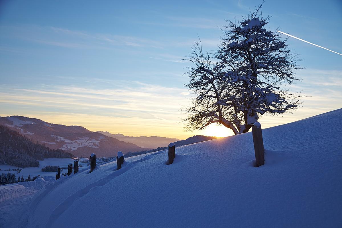 Auch im Winter ist unser hoteigener Rundwanderweg mit 2,5 km geräumt. Traumhaft schöne Ausblicke auf die Nagelfluhkette und auf Oberstaufen erwarten Sie