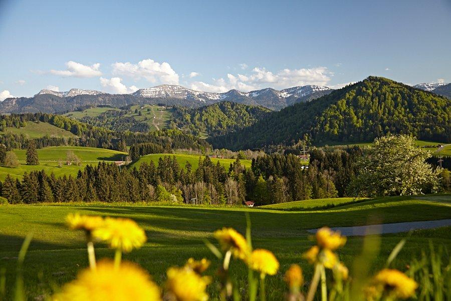 Haubers Alpenresort