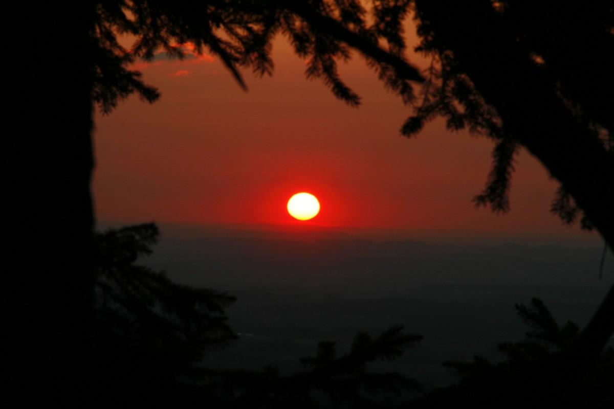 an gewitterfreien Sommerabenden starten wir zur Abendwandeung Richtung Jugethöhe.