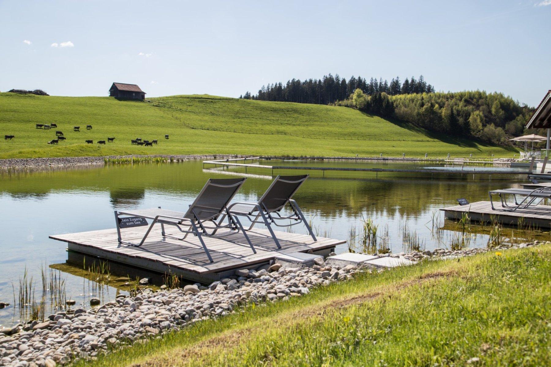 den Schumpen beim Grasen zusehen, die Ruhe genießen. Am neuen 2500 qm großen Natursee erleben Sie die Natur hautnah.