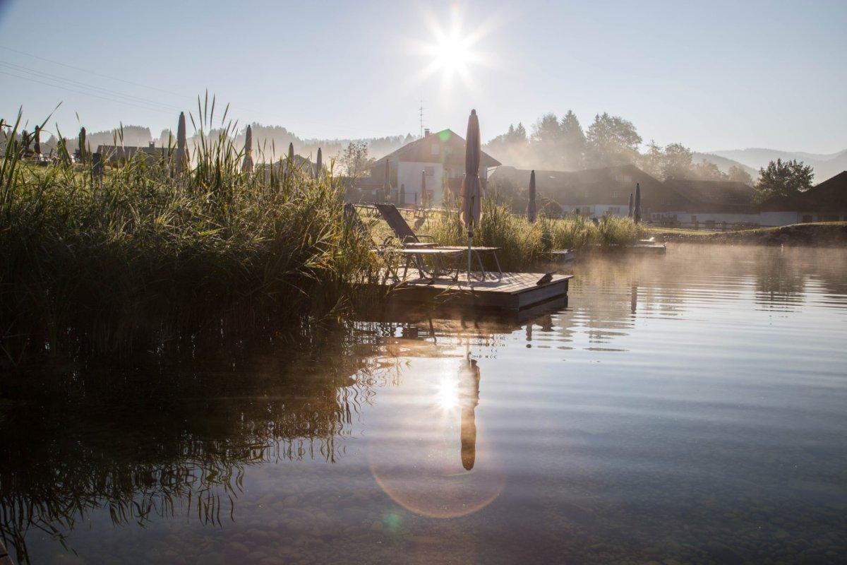 kleine Nebelschwaden umgeben den neuen Natursee