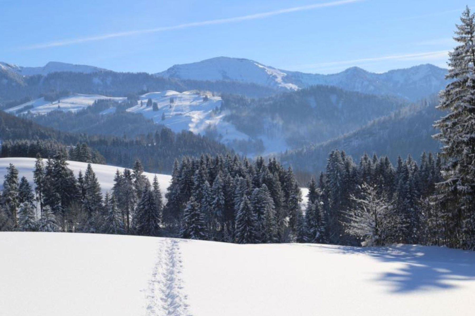 4-Gourmet-im-Schnee-1200x800px