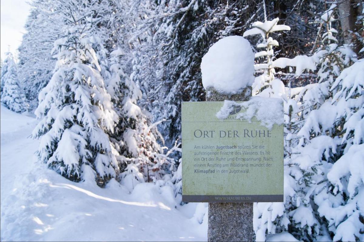 Winter-Waldbaden