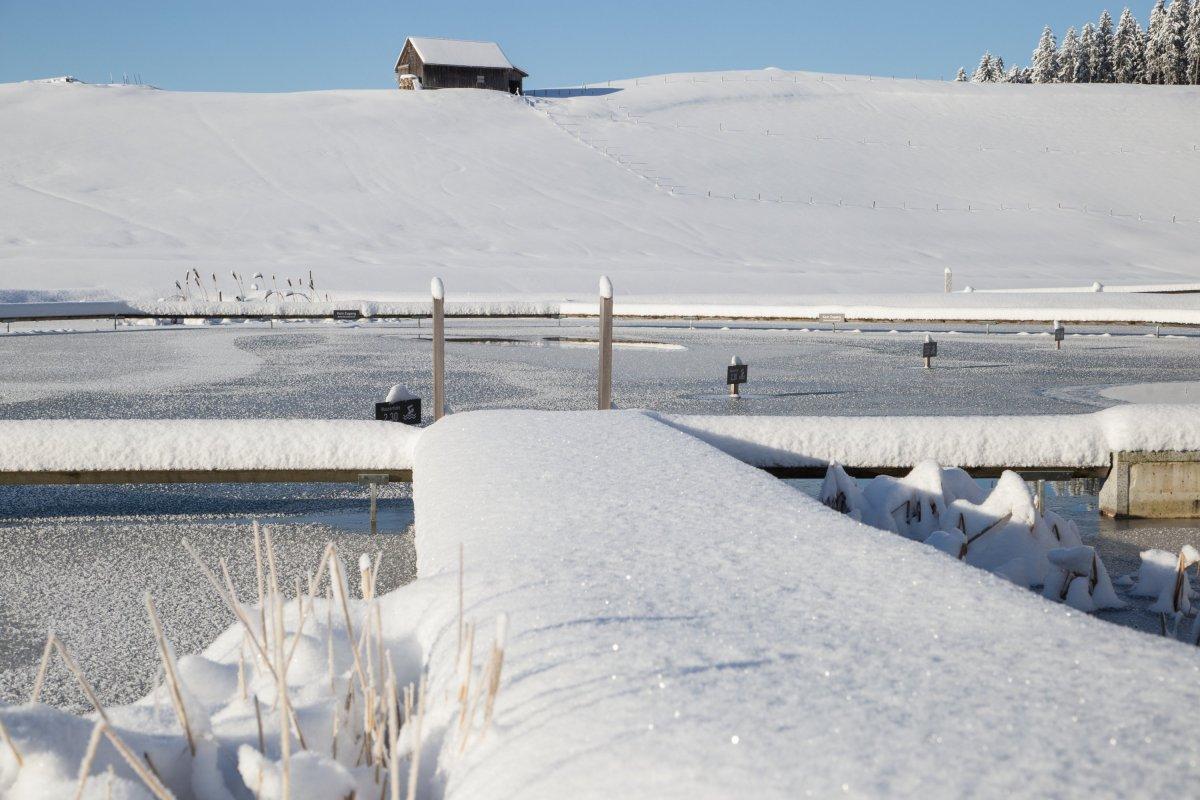 Verschneiter Steg zum Natursee